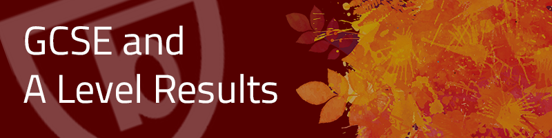 GCSE-a-level-results-header